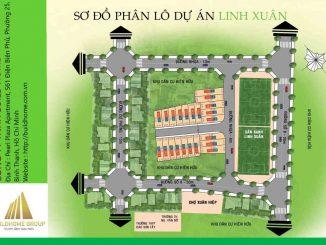 Phân lô dự án đất nền đường số 8 phường Linh Xuân Thủ Đức