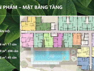 Sài Gòn Asiana Quận 6 - Mặt bằng